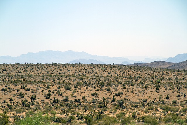 red-rock-canyon-2871902_640